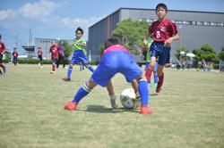 mini_soccer (433)
