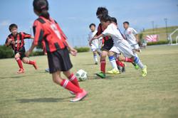 mini_soccer (342)