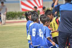 mini_soccer (649)