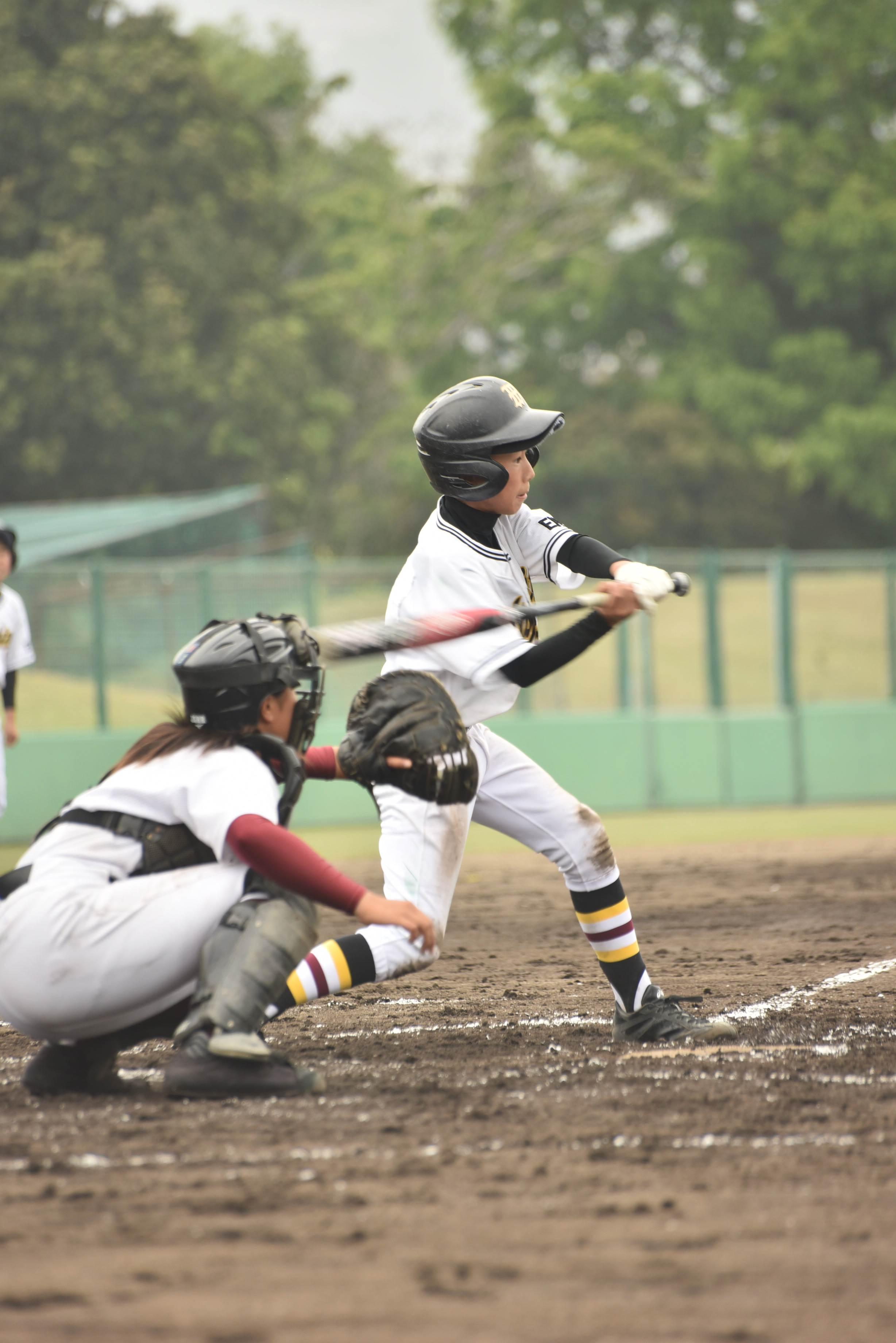 野球 (95)