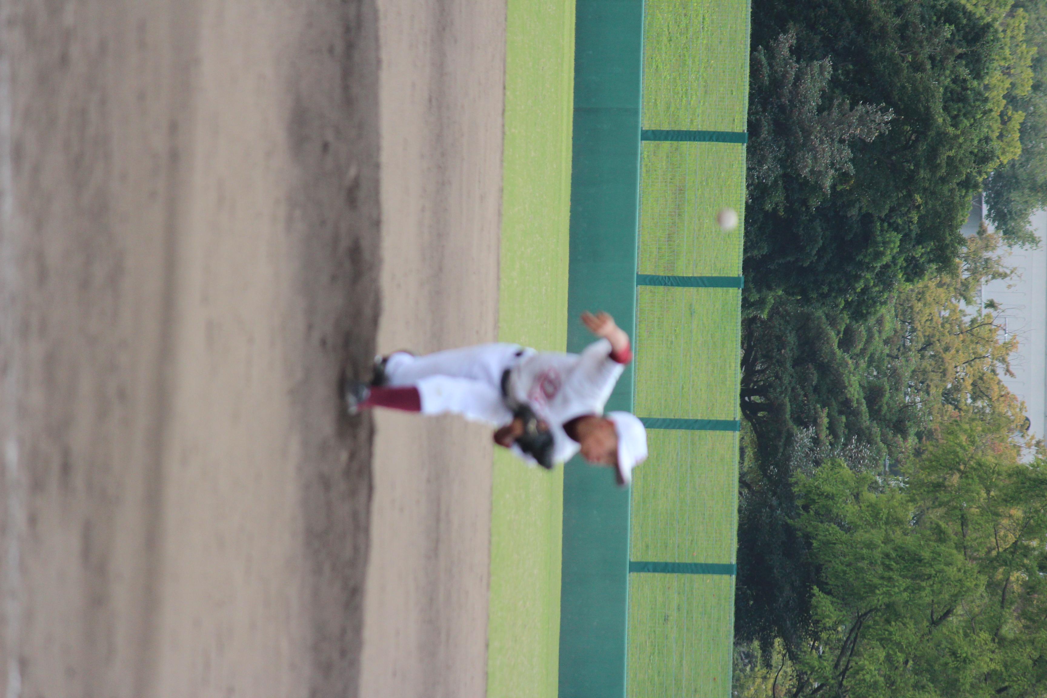 野球 (885)