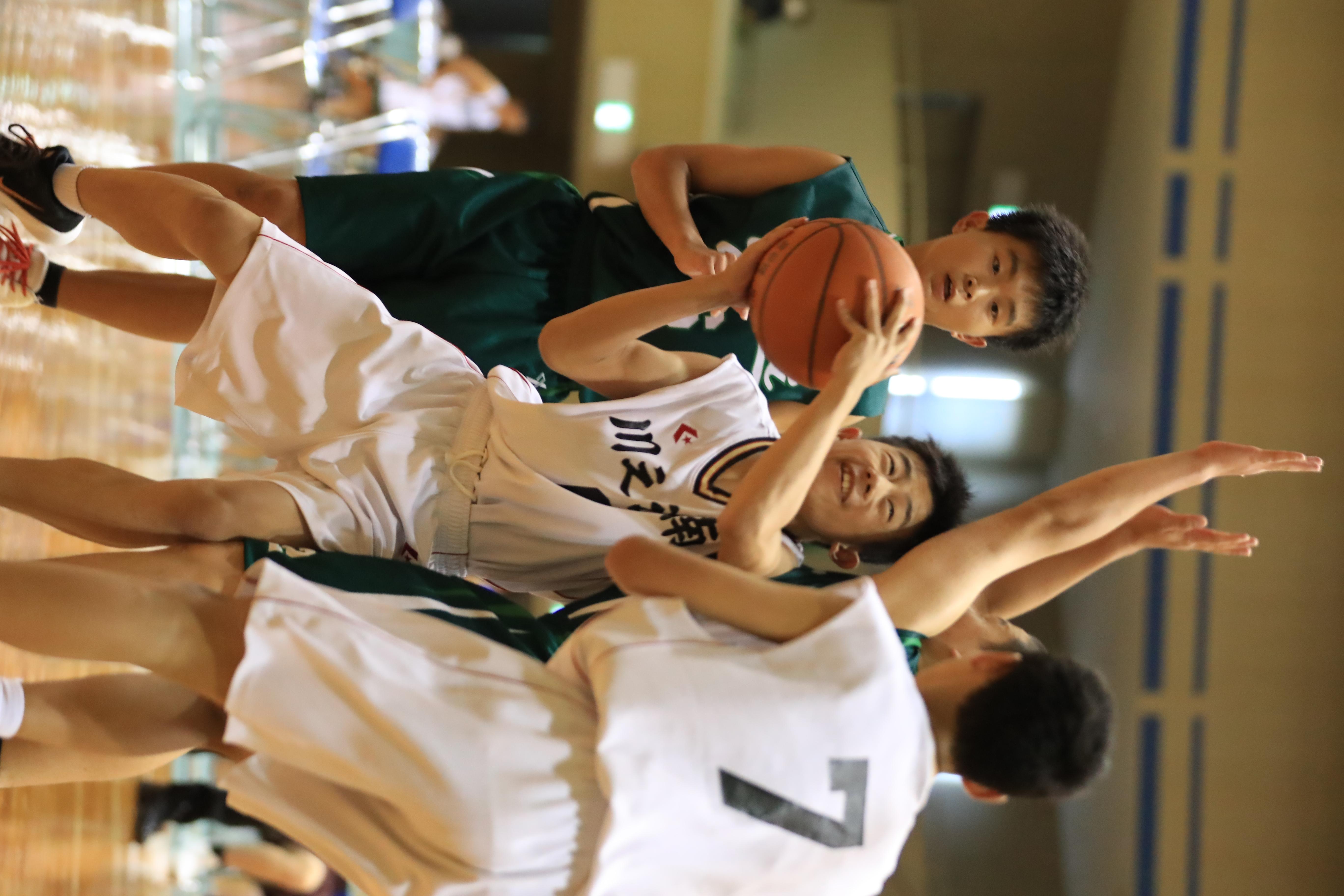 バスケット (301)