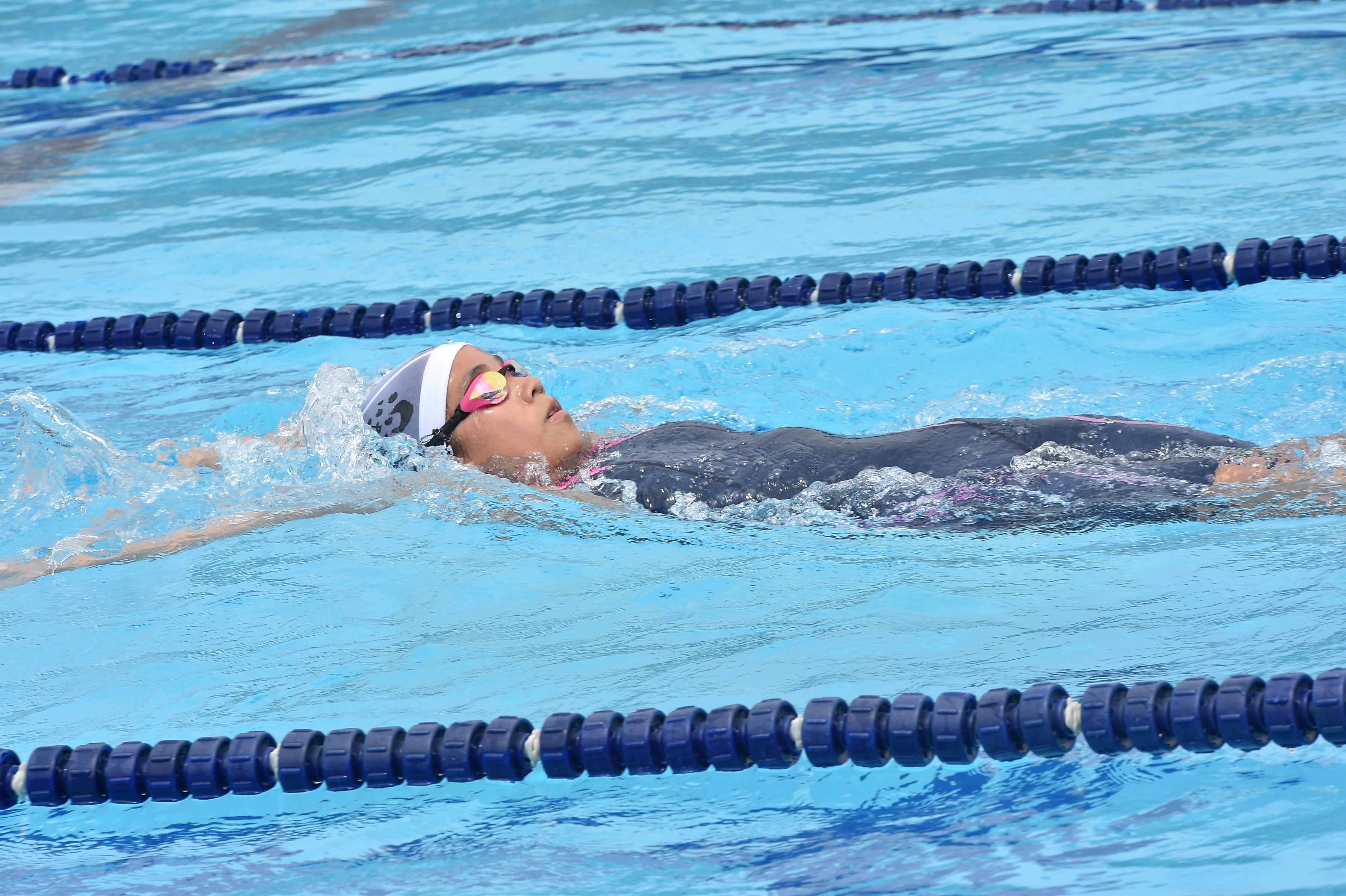 水泳 (40)