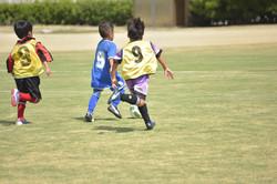 mini_soccer (611)