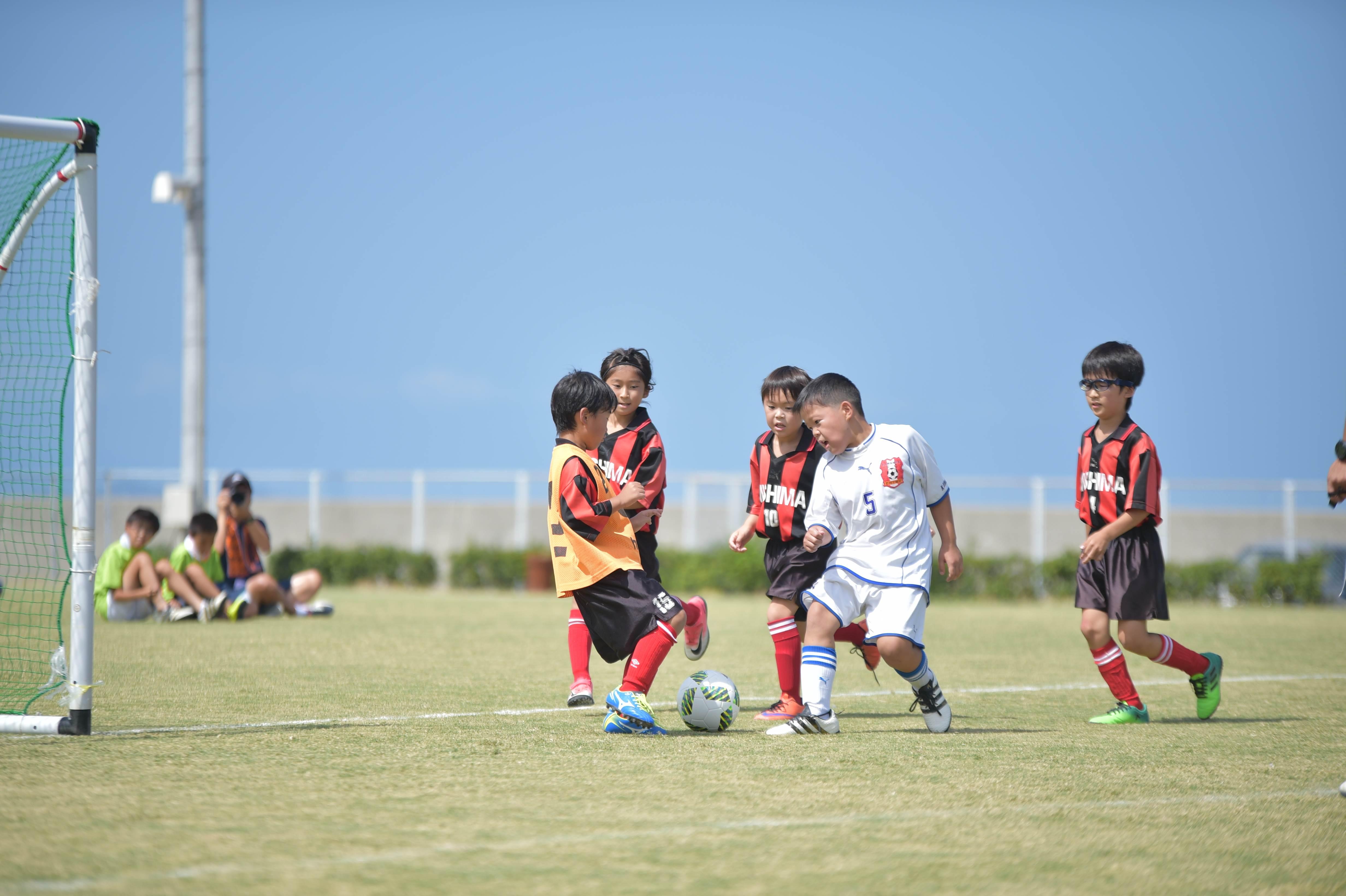 mini_soccer (321)