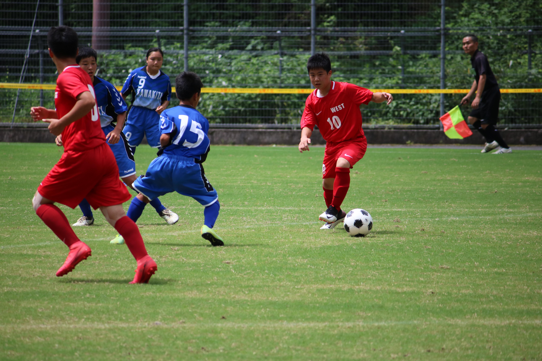 サッカー (496)