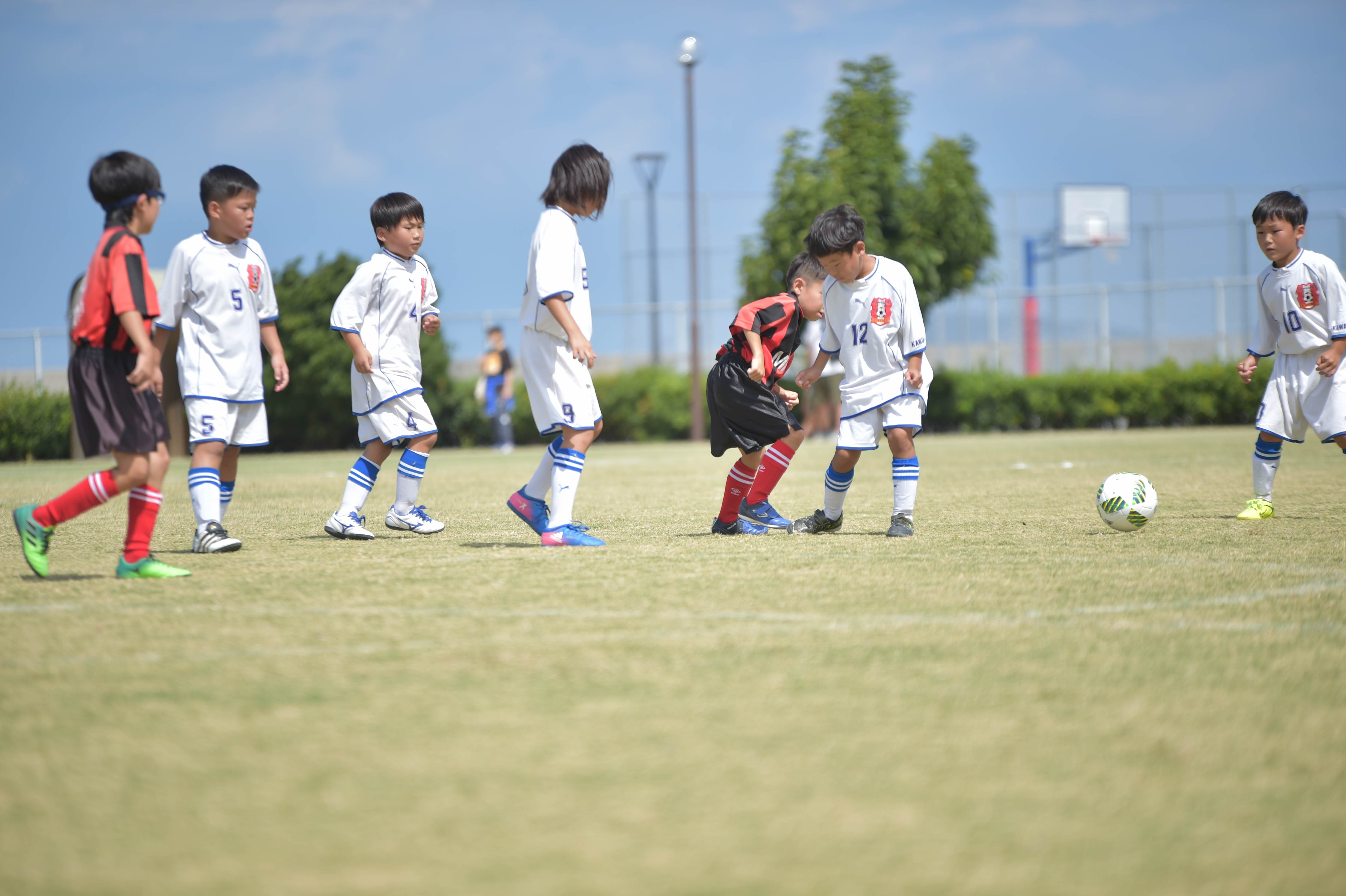 mini_soccer (324)