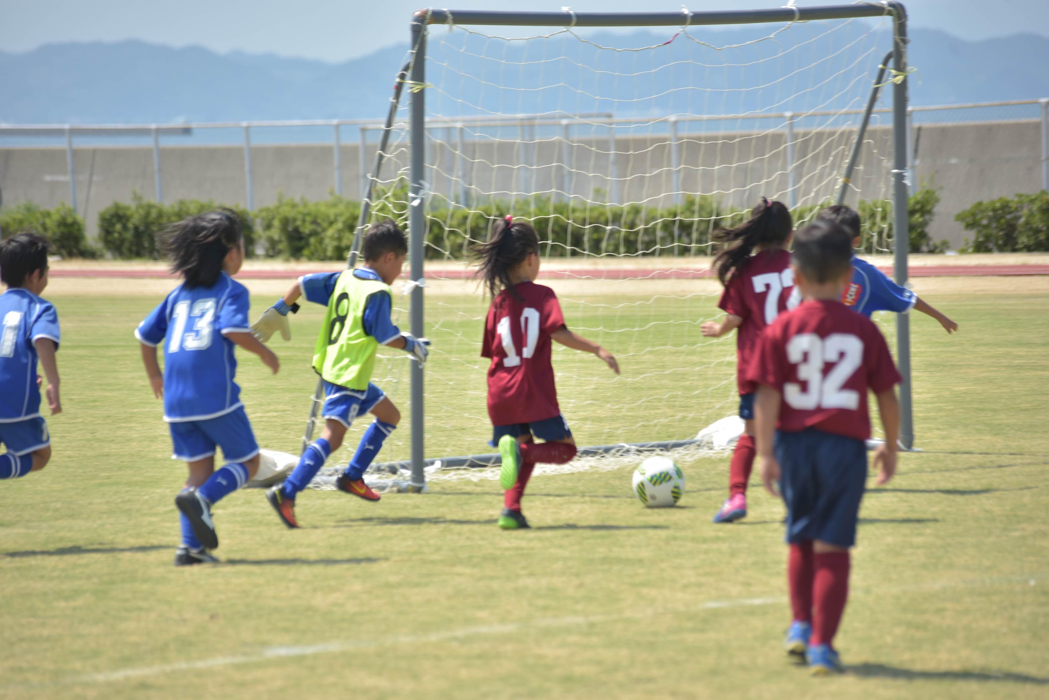 mini_soccer (678)