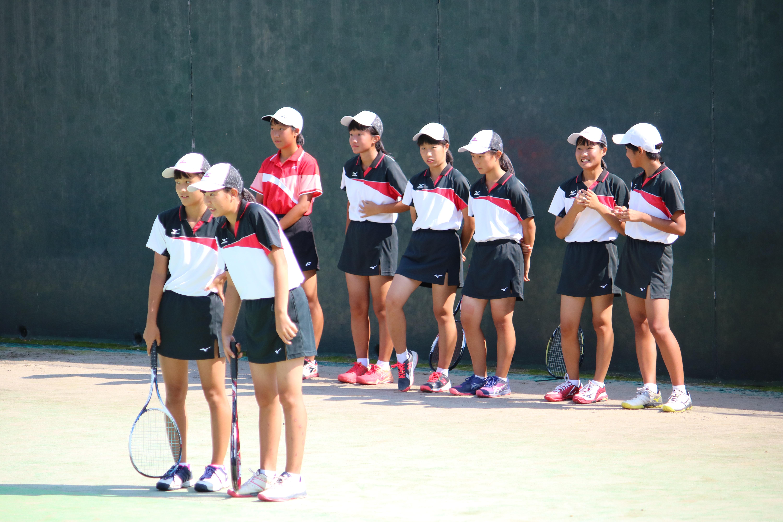 ソフトテニス(241)