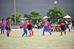 mini_soccer (213)