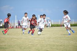 mini_soccer (313)