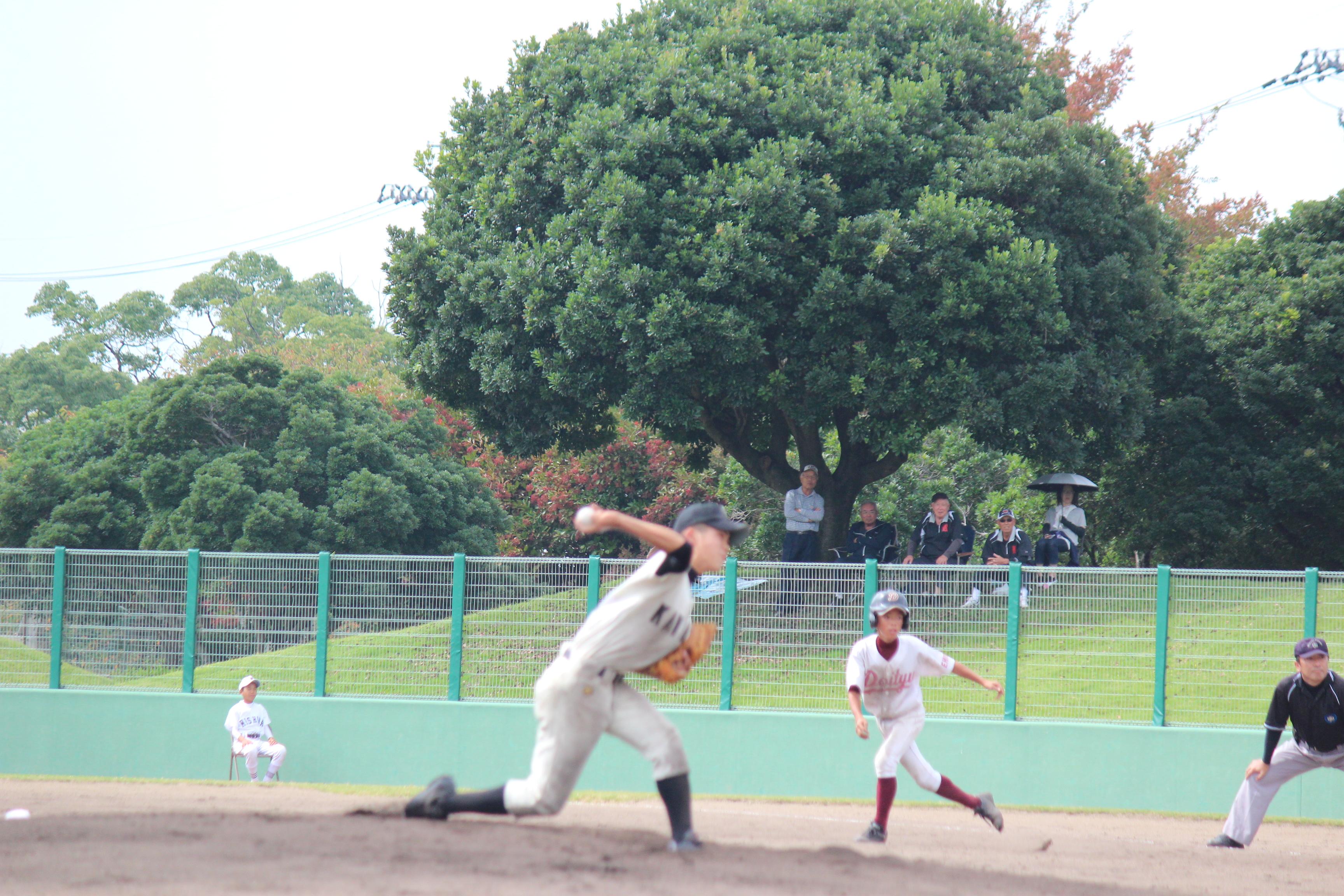 野球 (802)