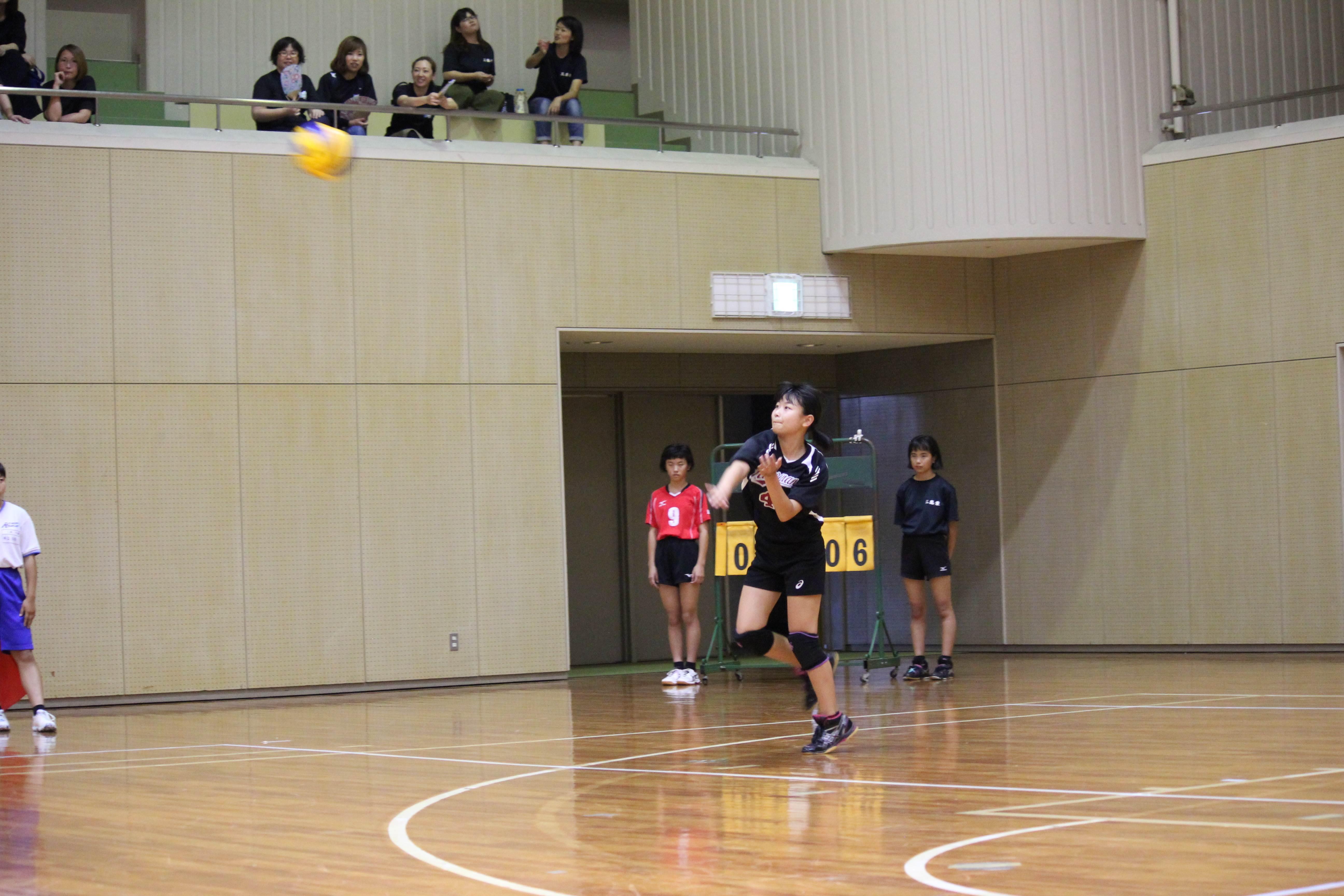 バレーボール (374)