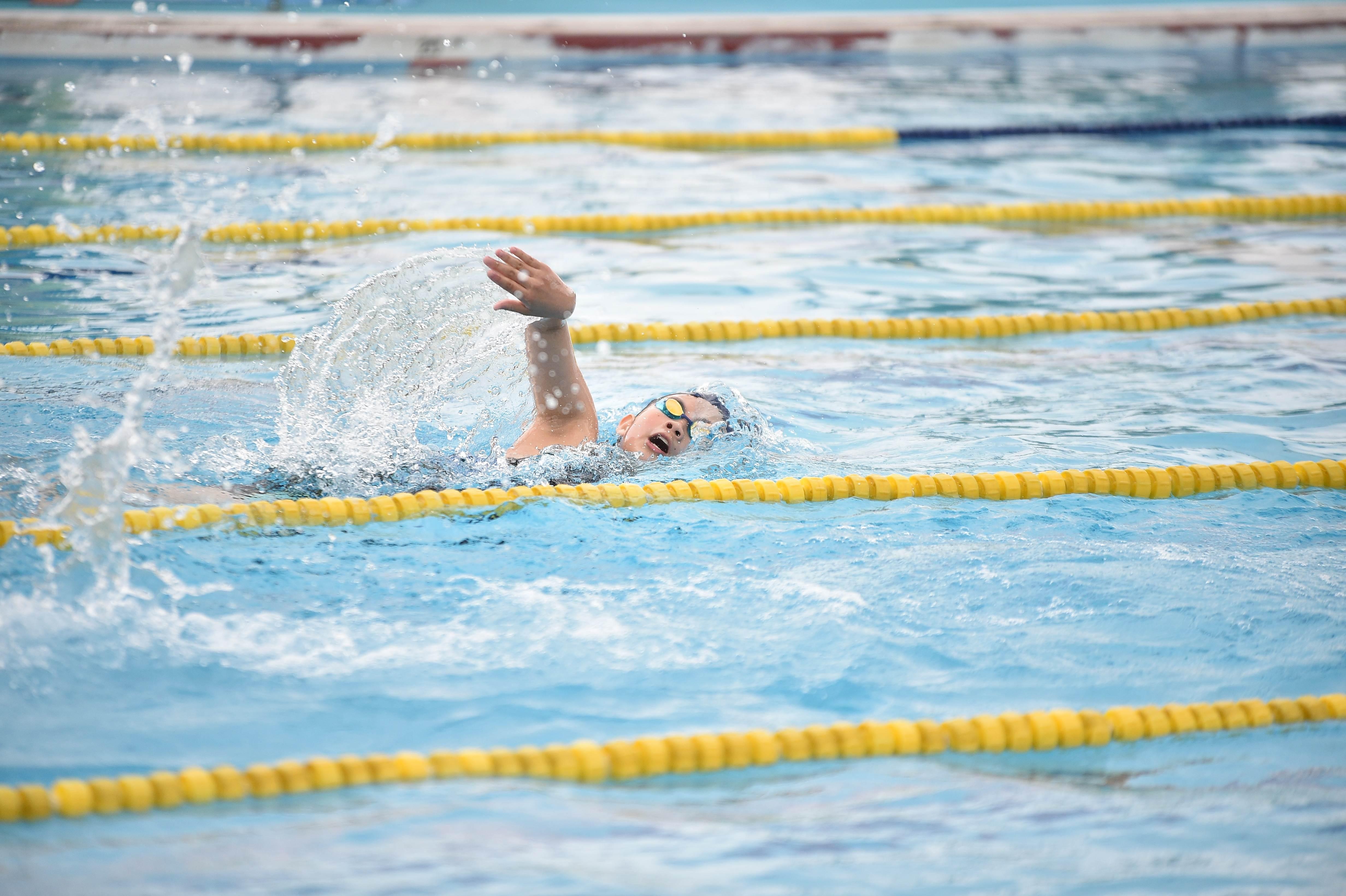 水泳 (100)