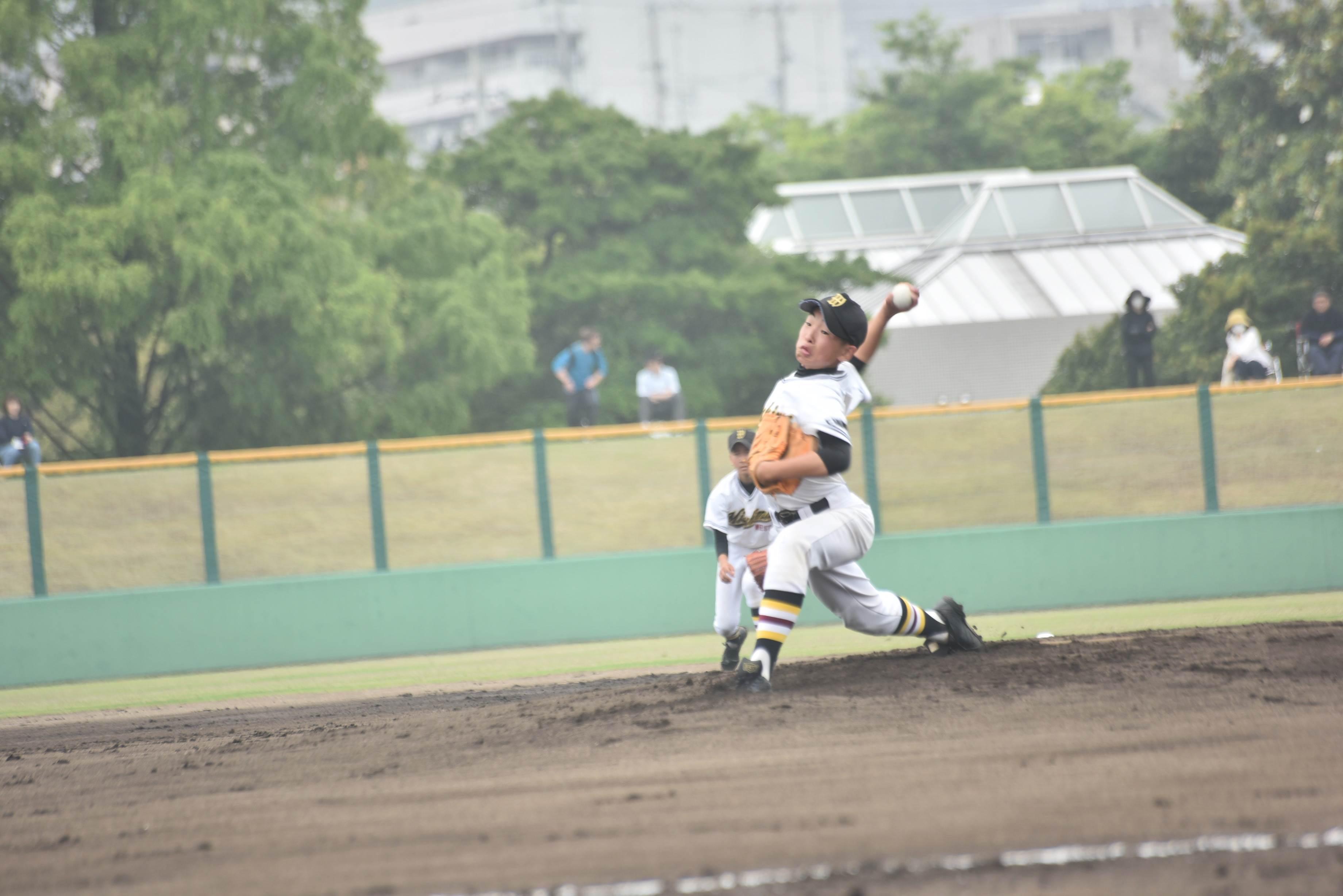 野球 (83)