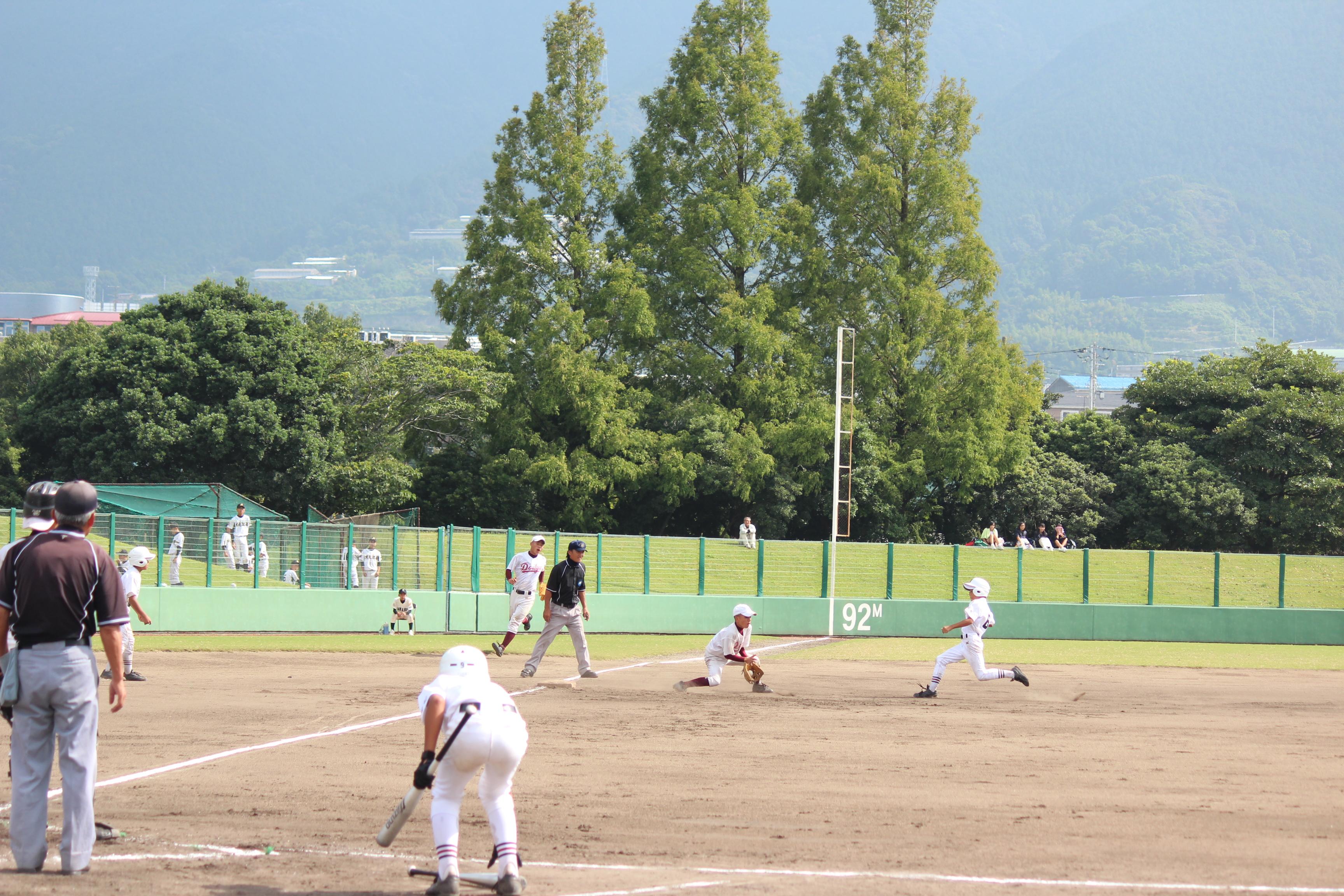 野球 (971)