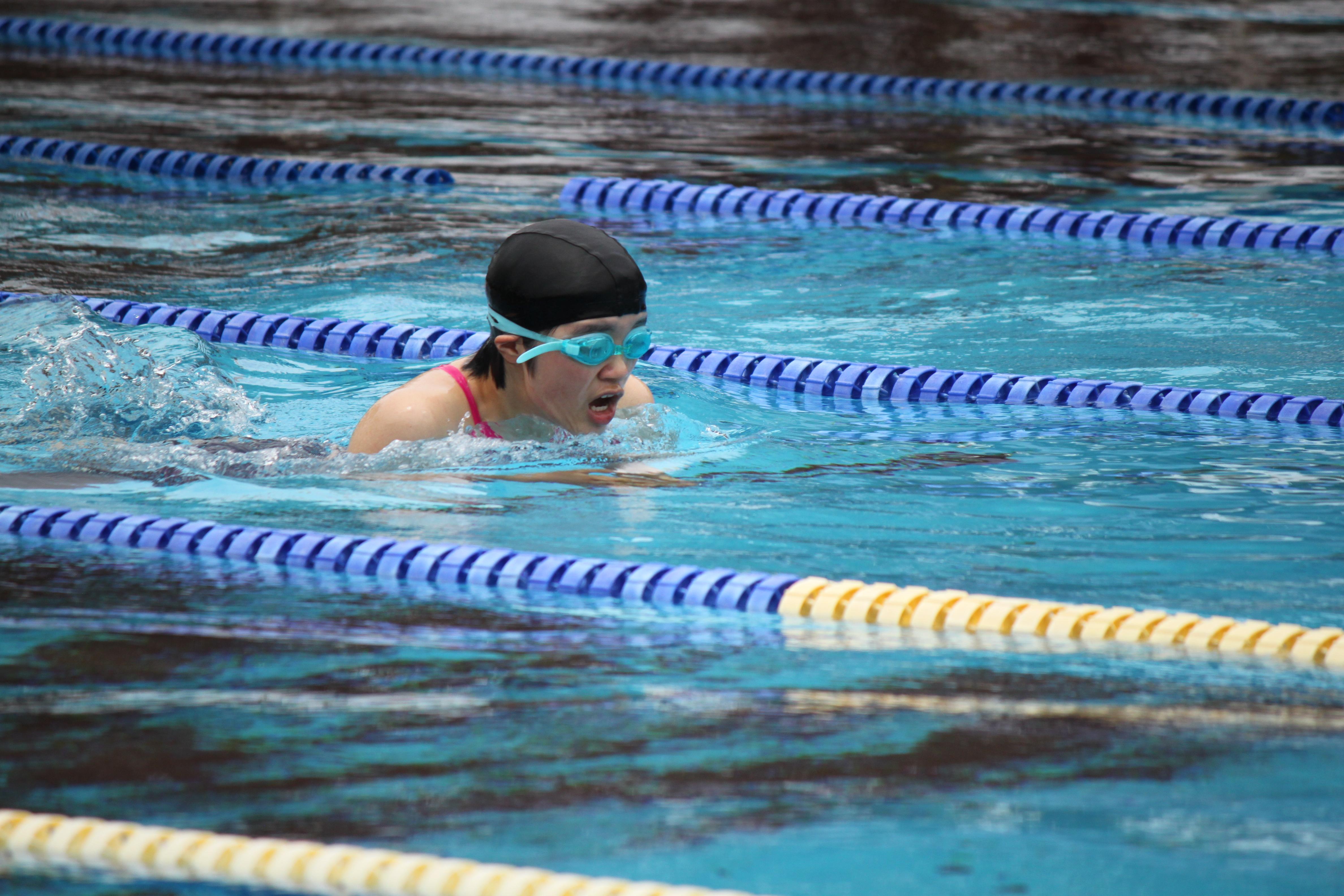 水泳競技 (50)