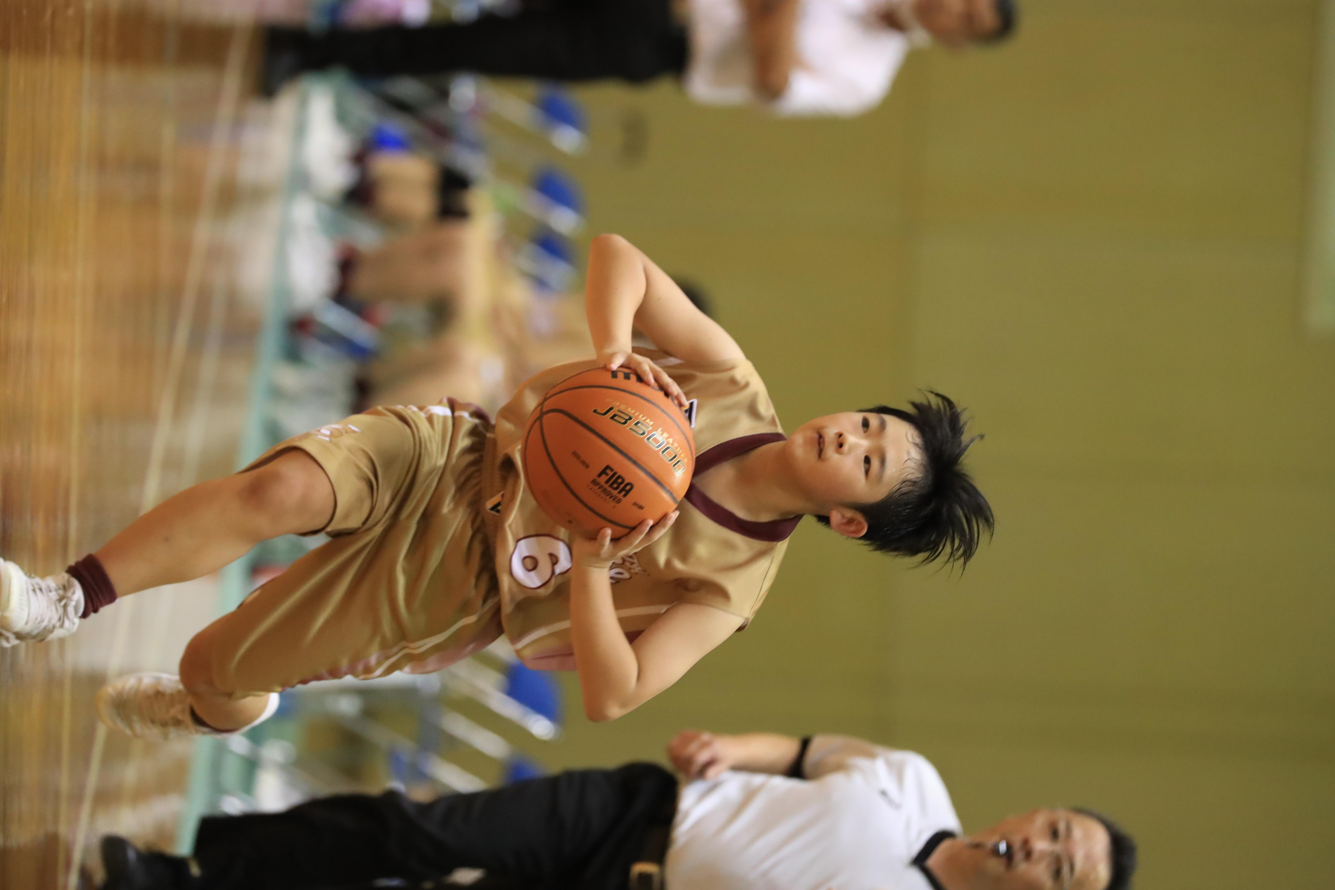 バスケット (592)