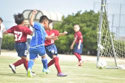mini_soccer (552)