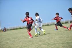 mini_soccer (343)