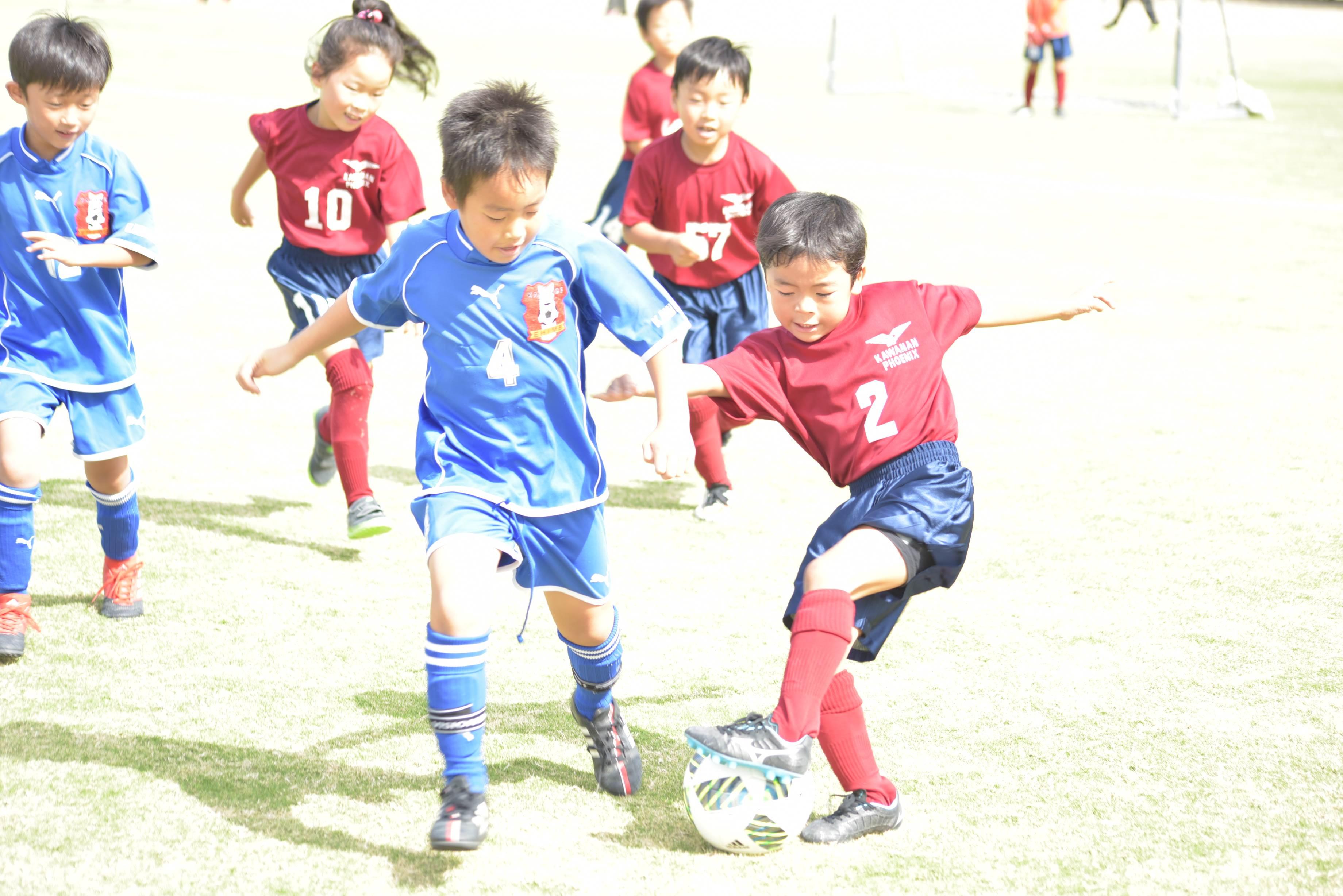 mini_soccer (547)