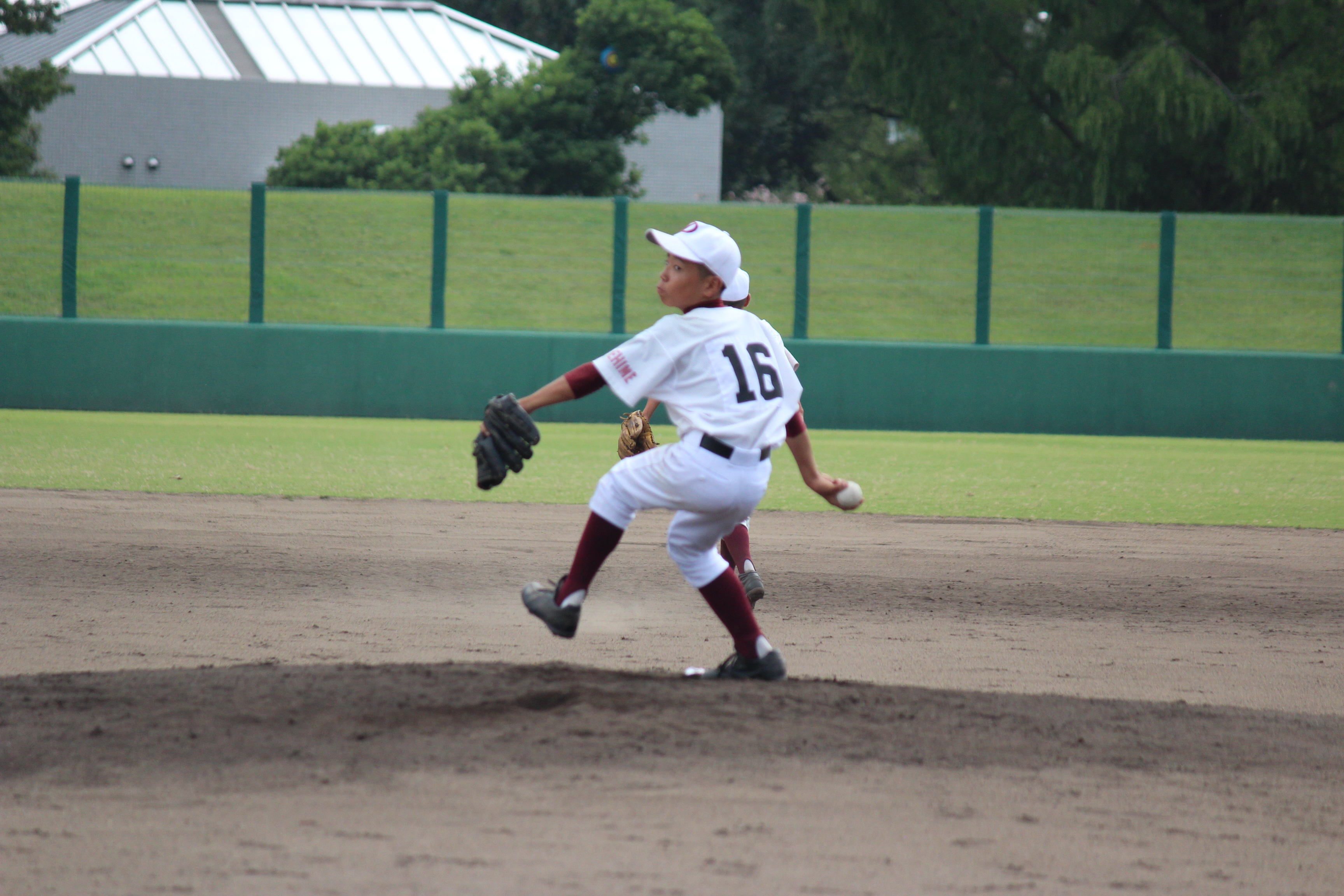 野球 (875)
