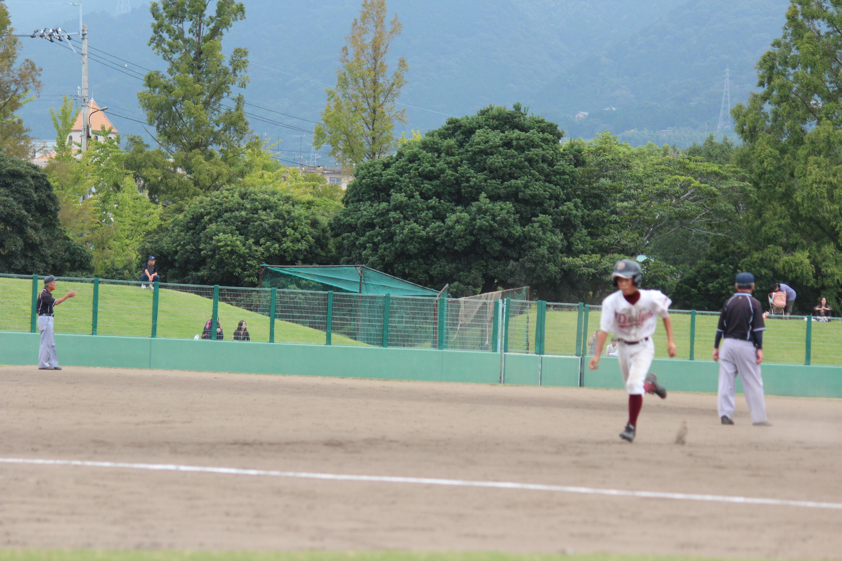 野球 (278)