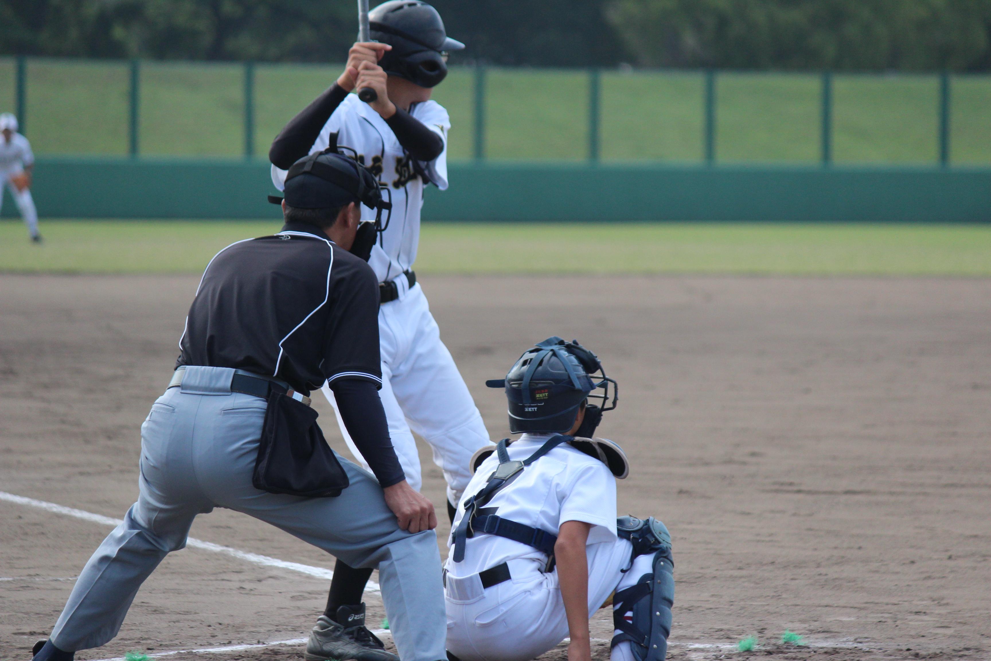 野球 (367)