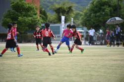 mini_soccer (167)
