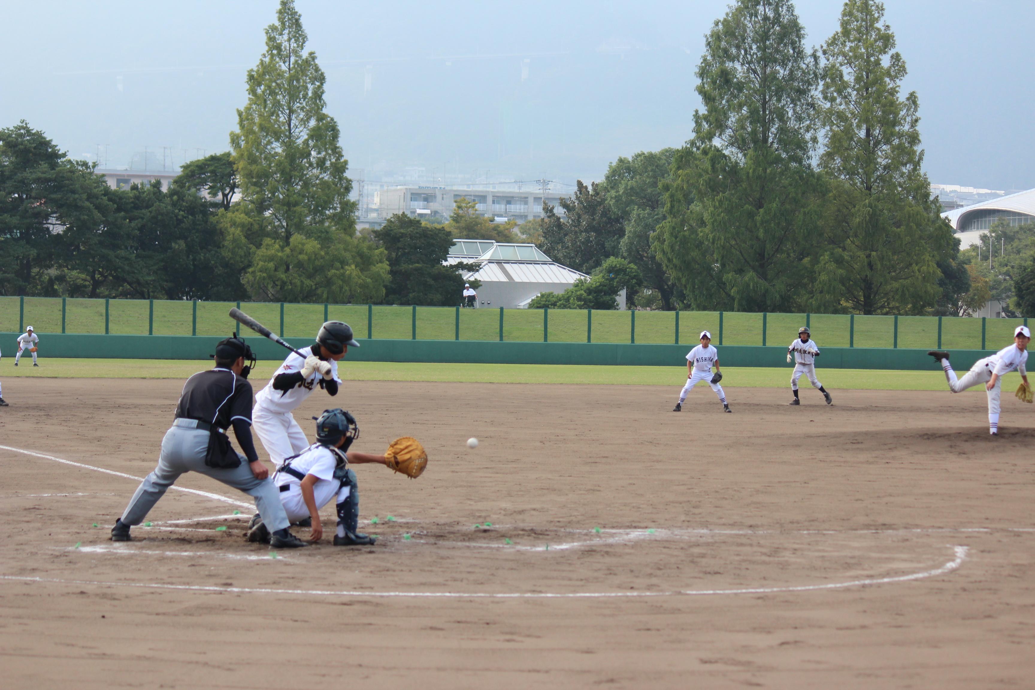 野球 (373)