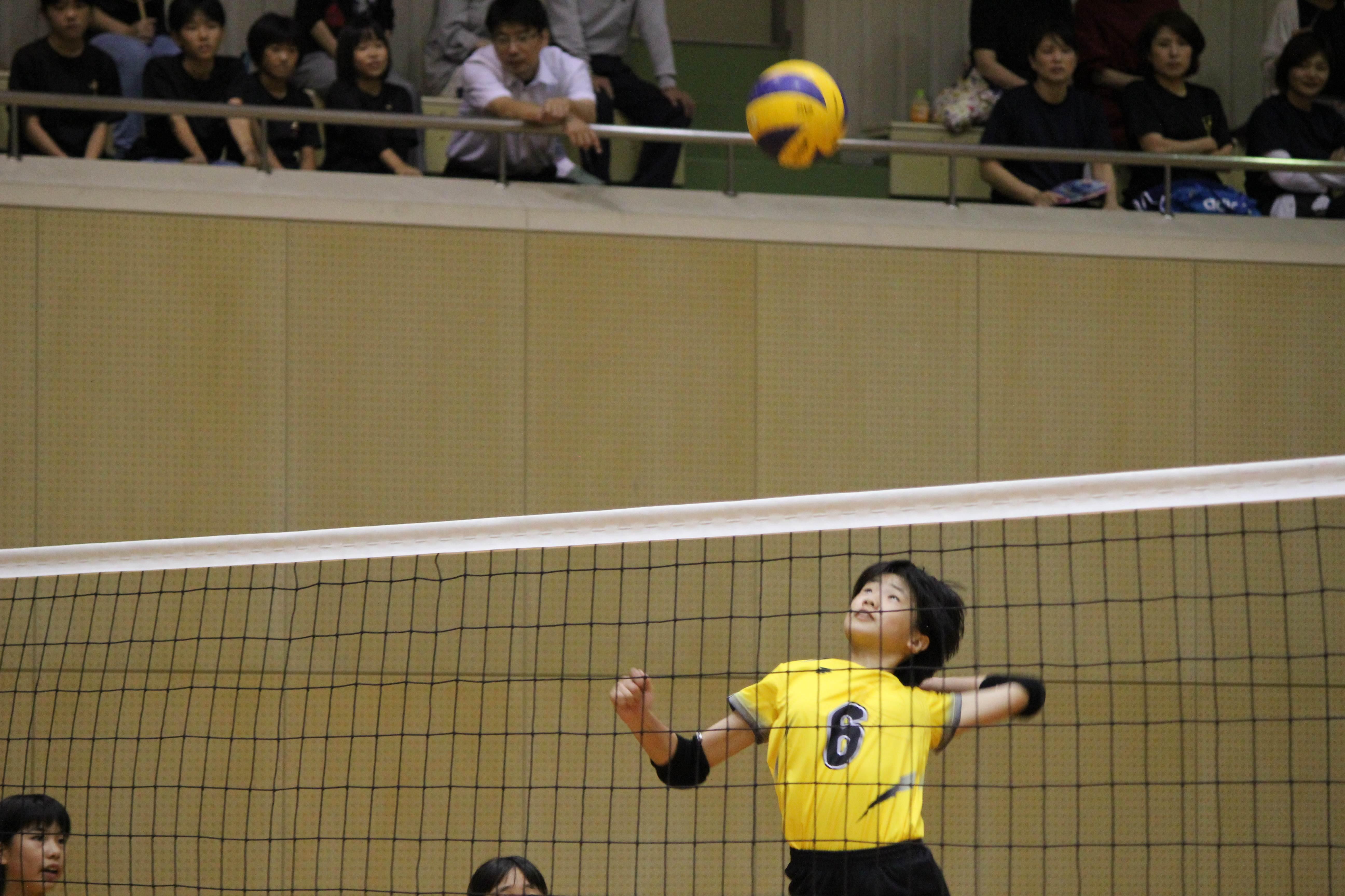 バレーボール (123)