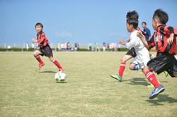 mini_soccer (326)