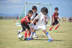 mini_soccer (361)