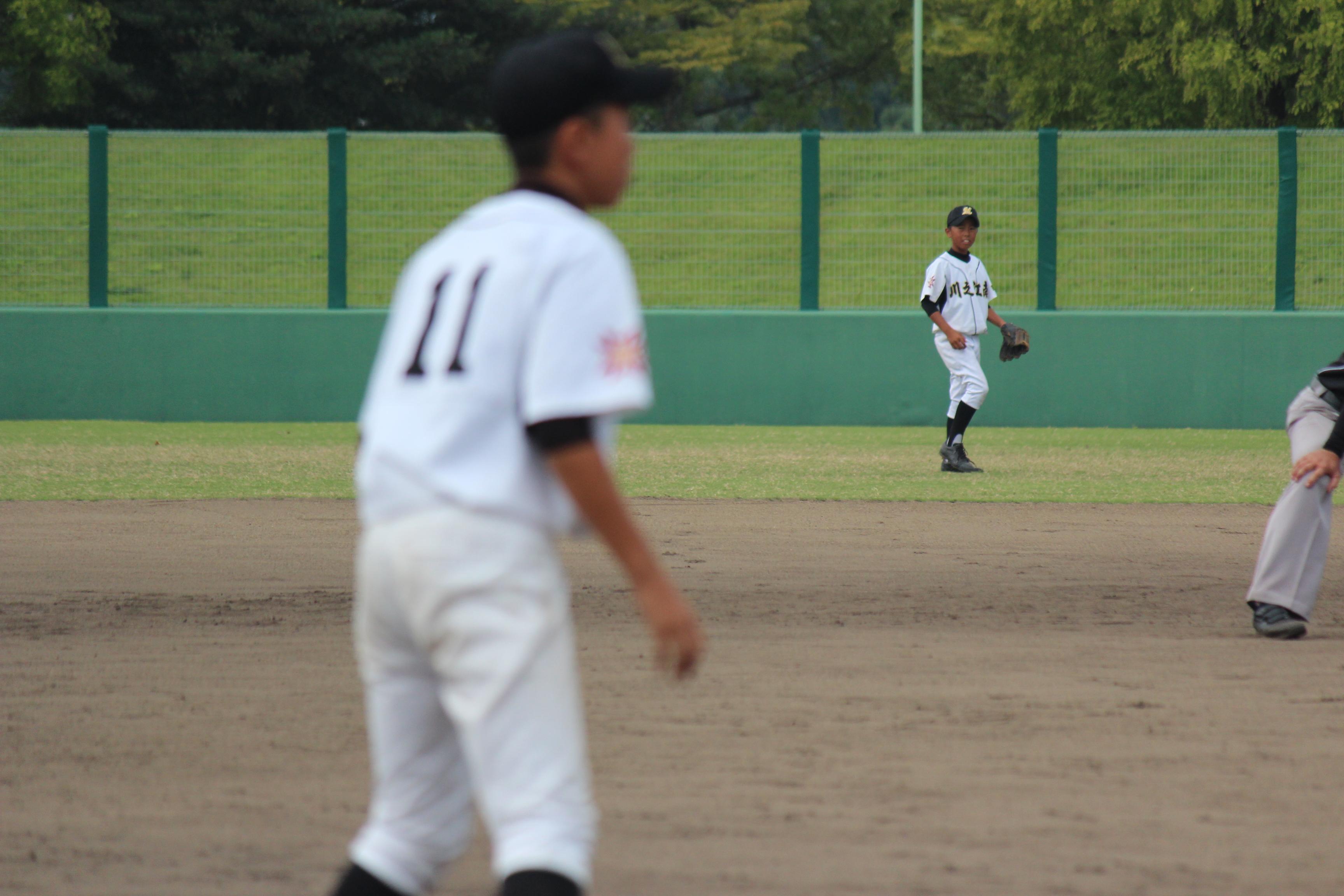 野球 (502)