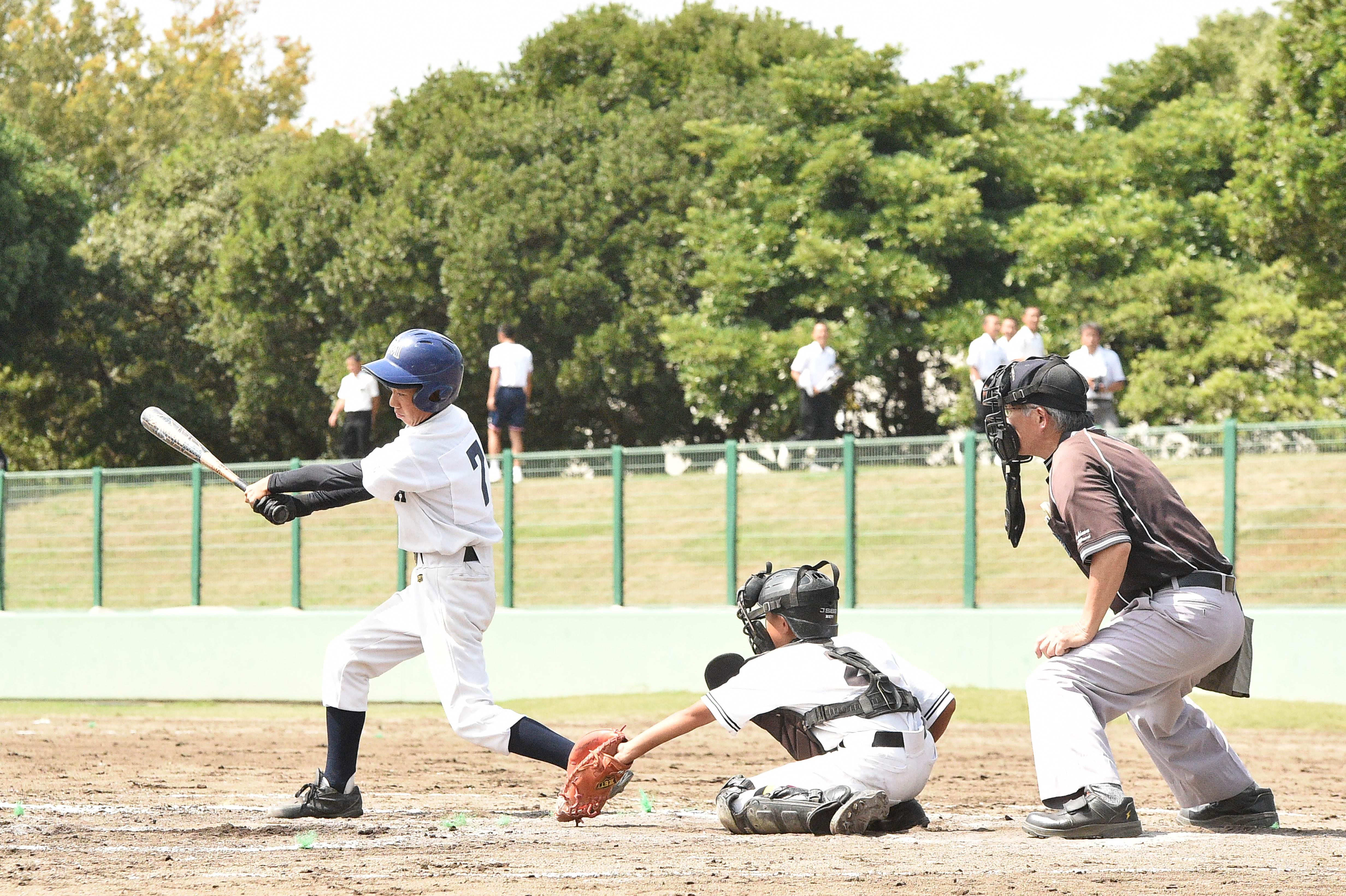 basaball (16)