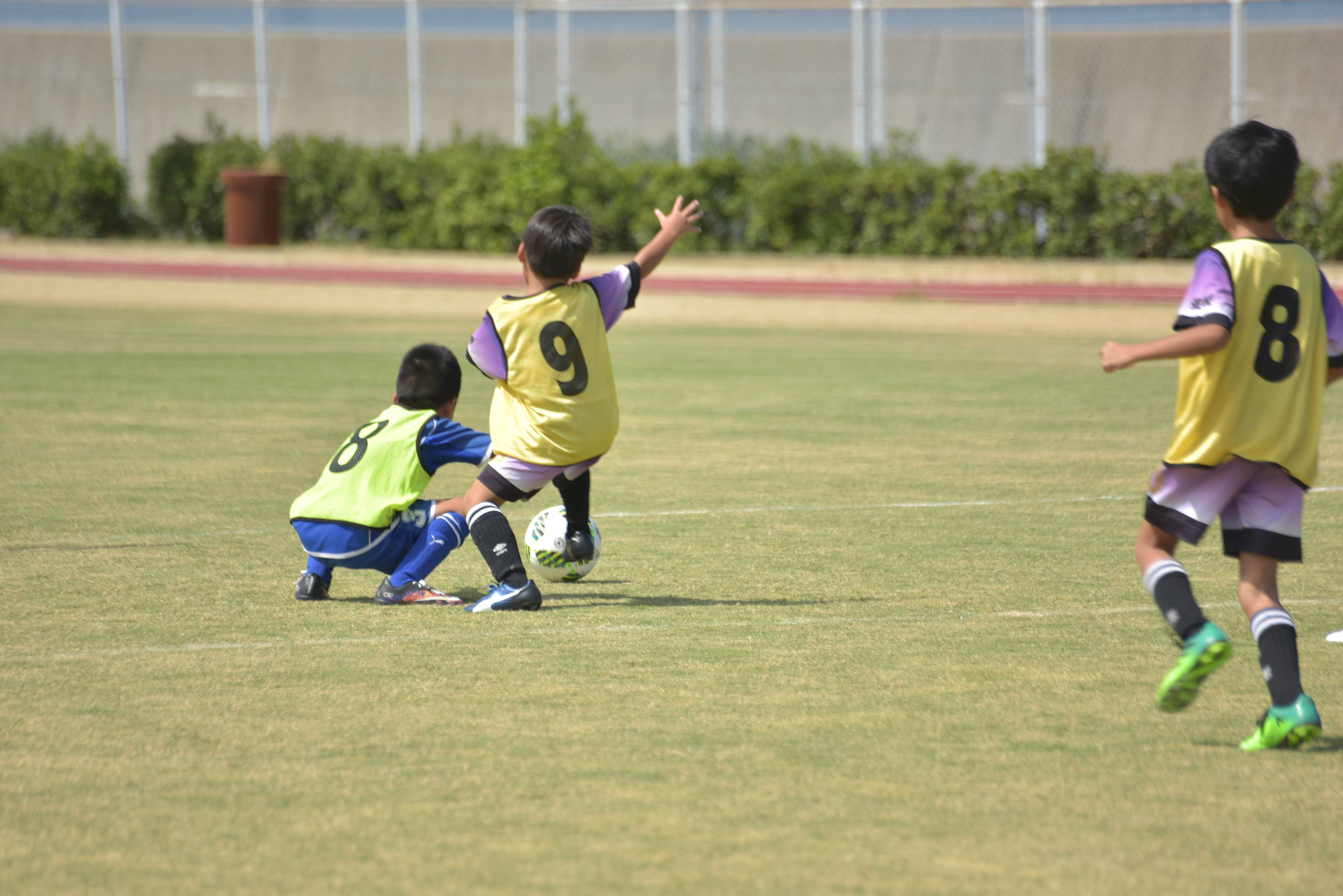 mini_soccer (614)