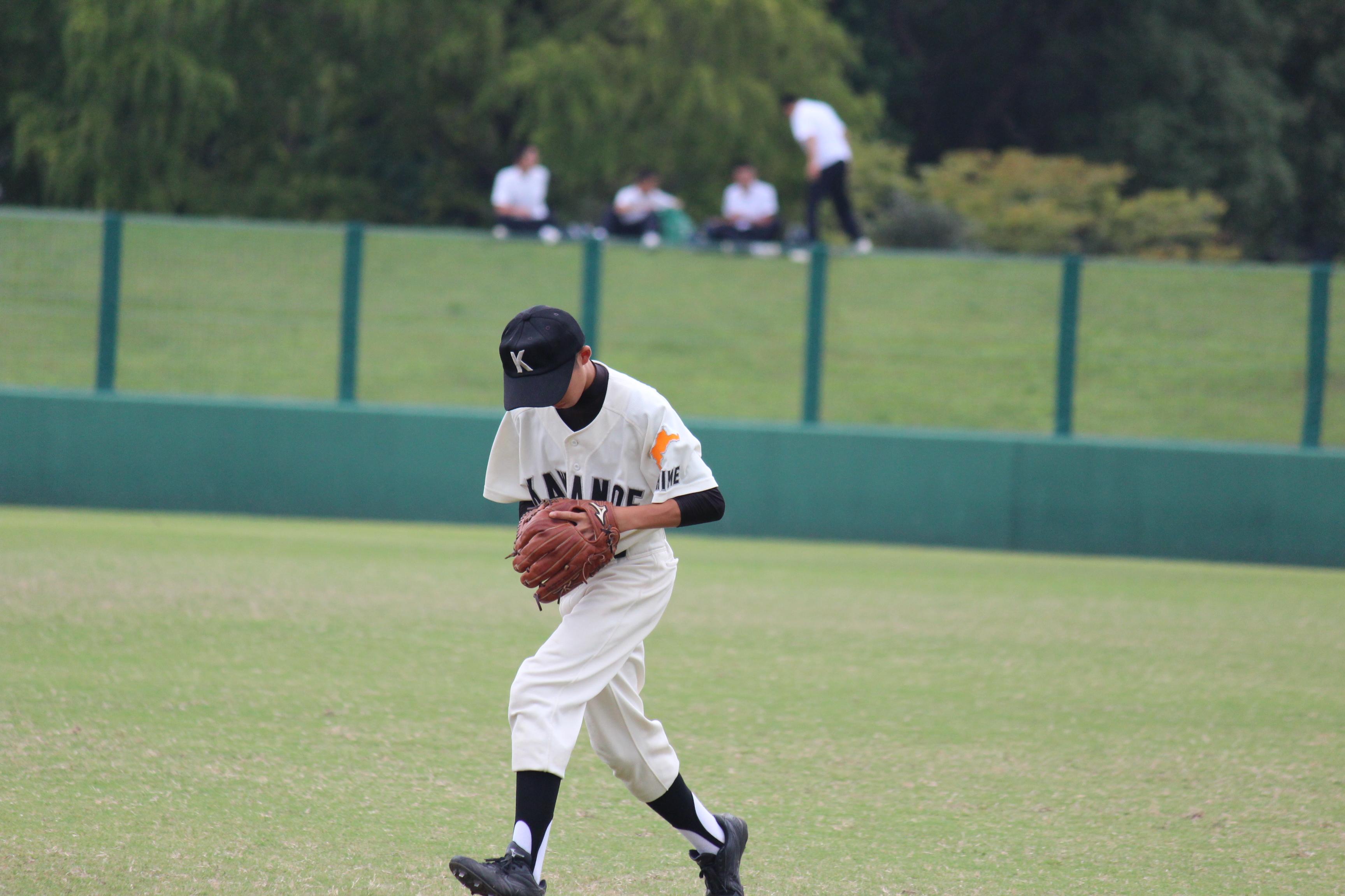 野球 (533)