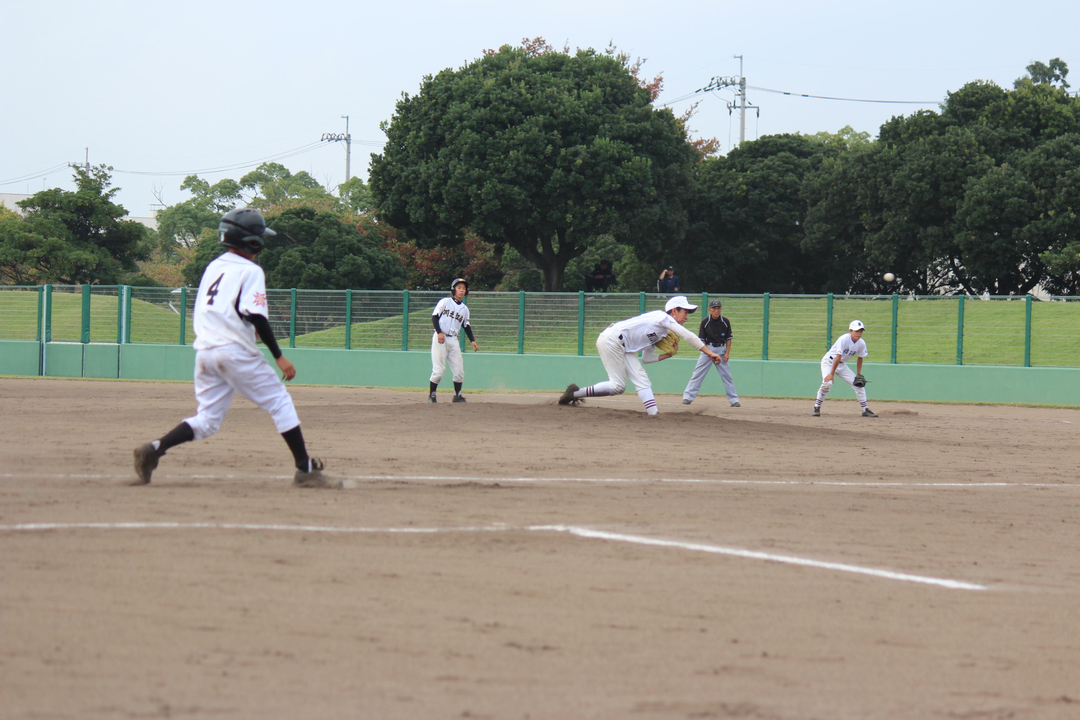野球 (491)