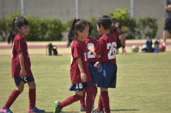 mini_soccer (679)