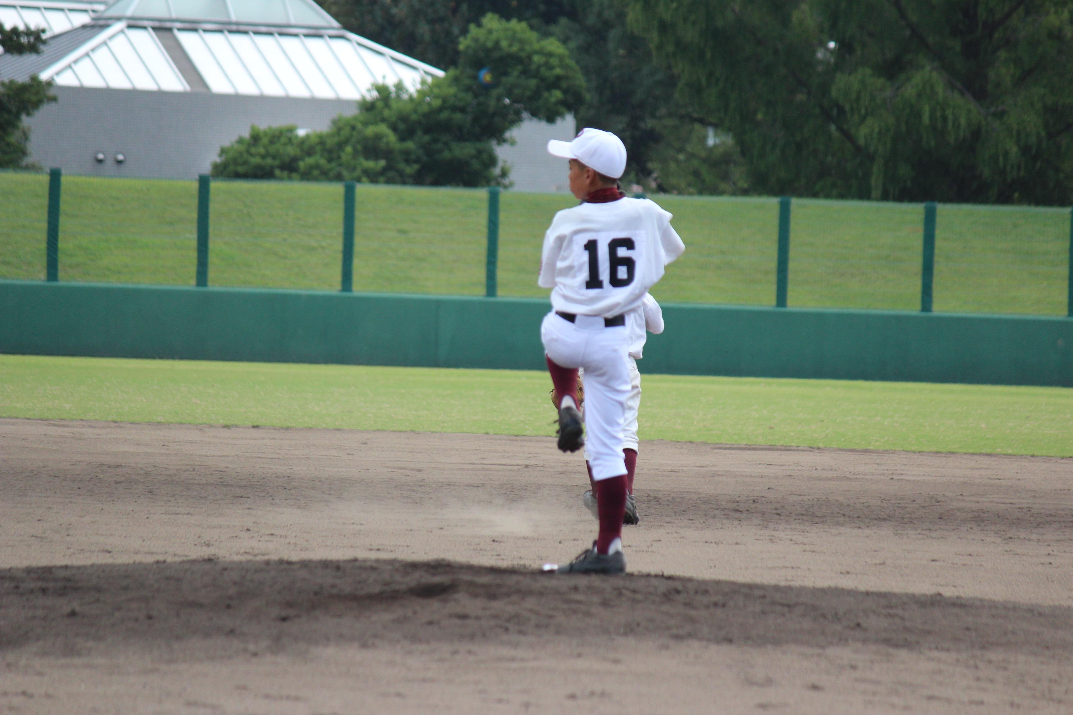 野球 (873)