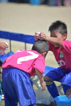 mini_soccer (444)
