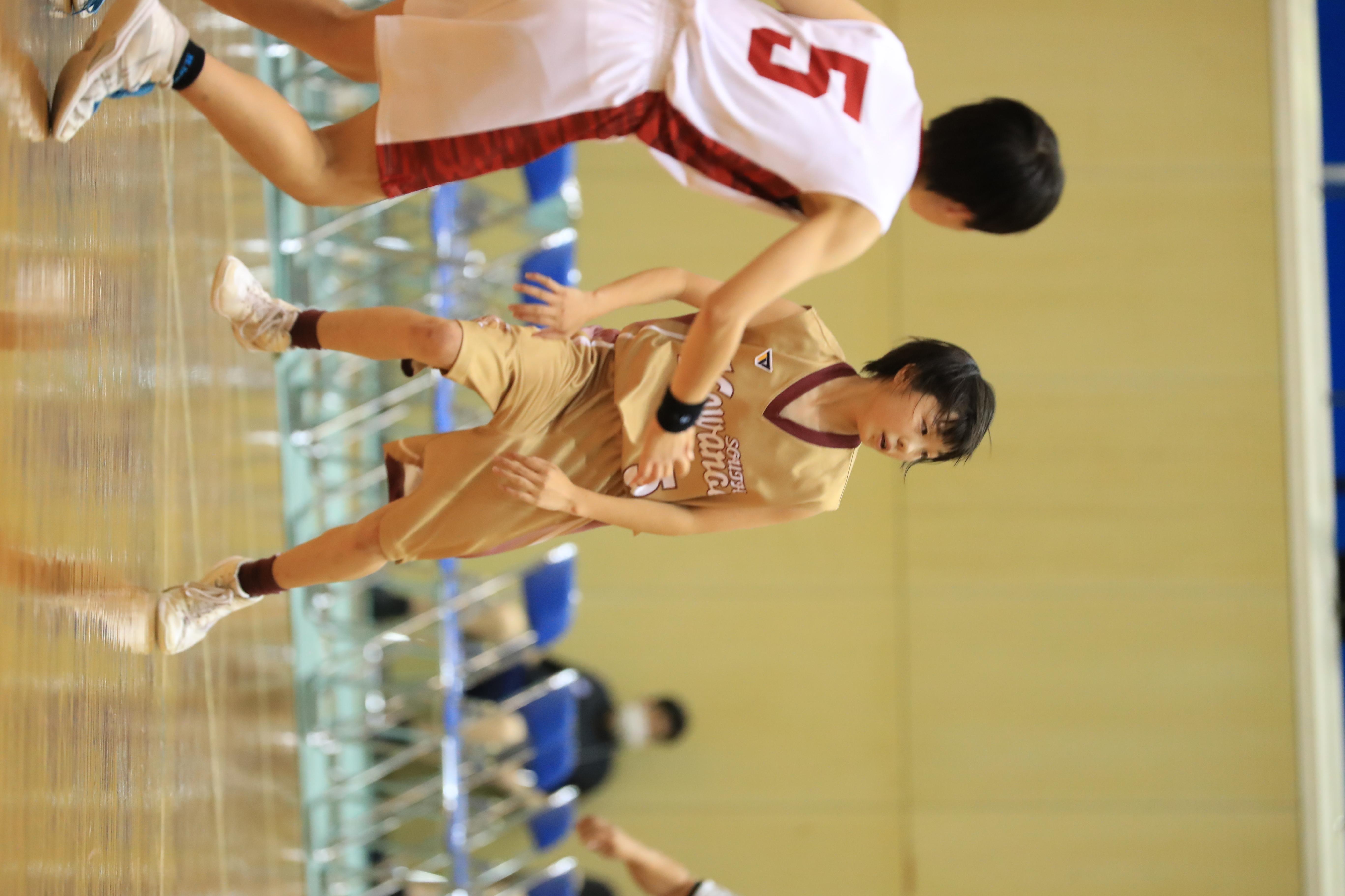 バスケット (572)