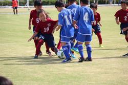 mini_soccer (101)