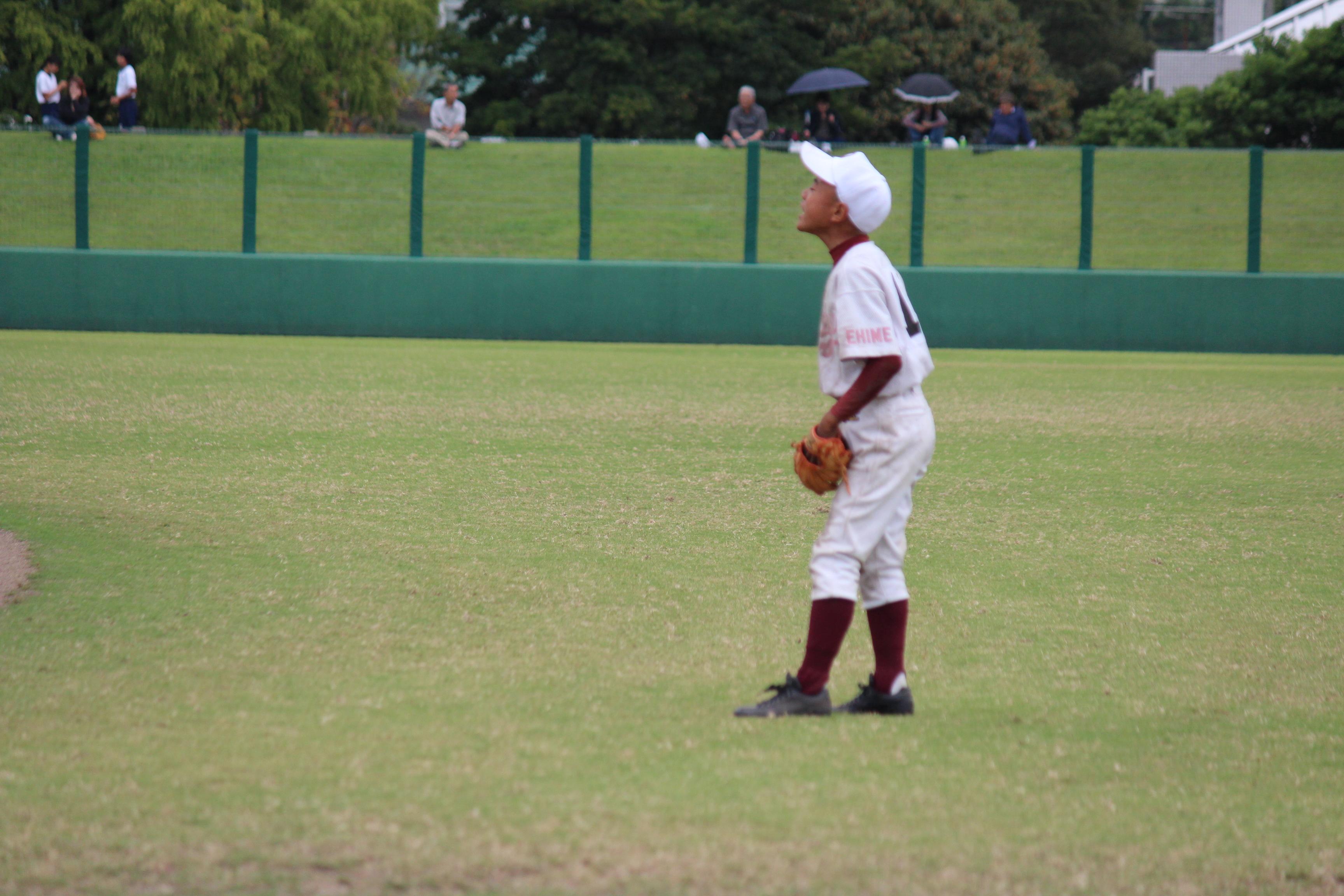 野球 (324)