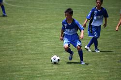 サッカー (483)