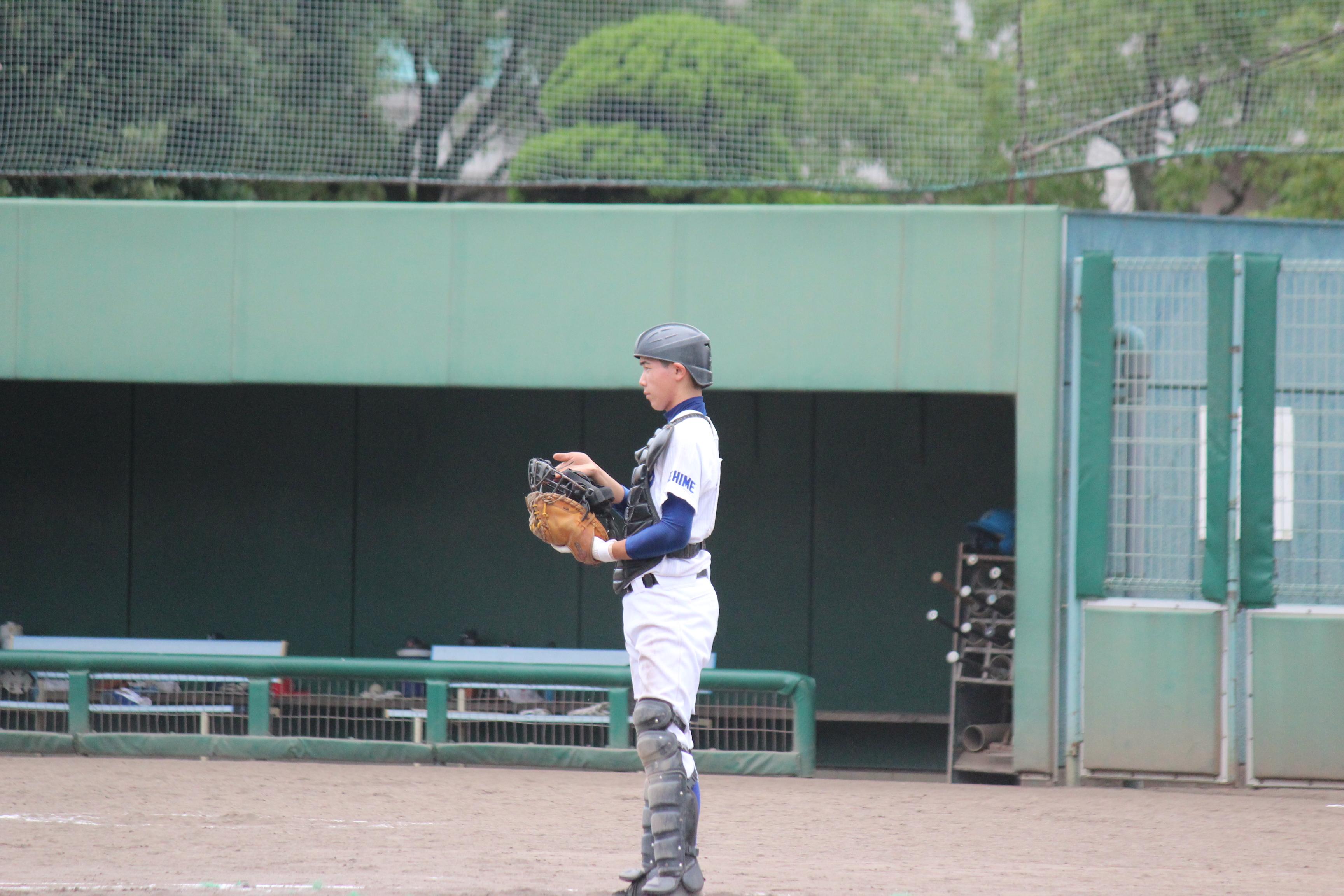 野球 (248)