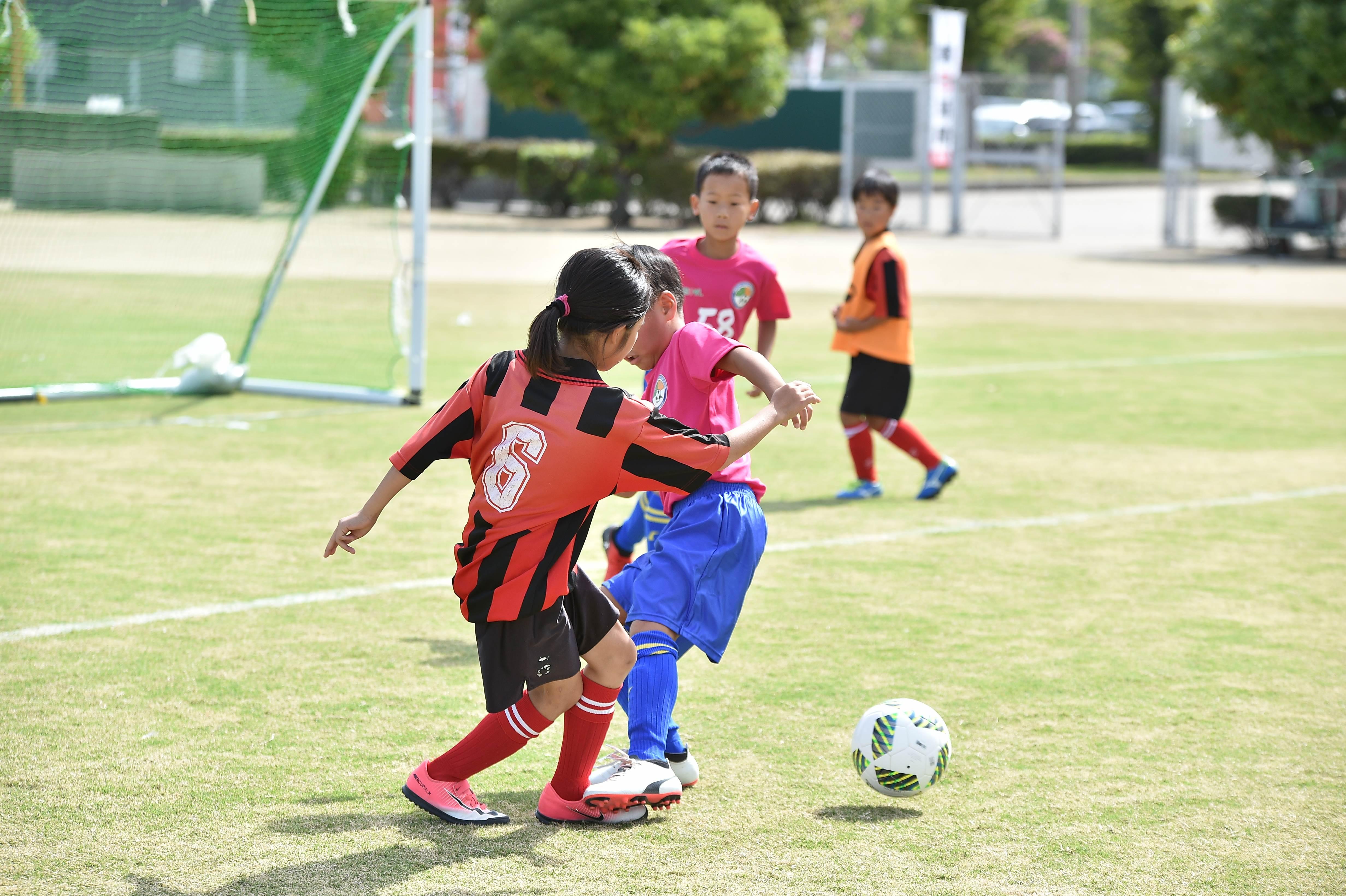 mini_soccer (152)