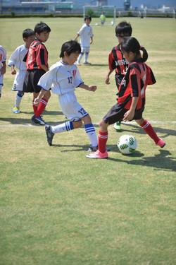 mini_soccer (387)