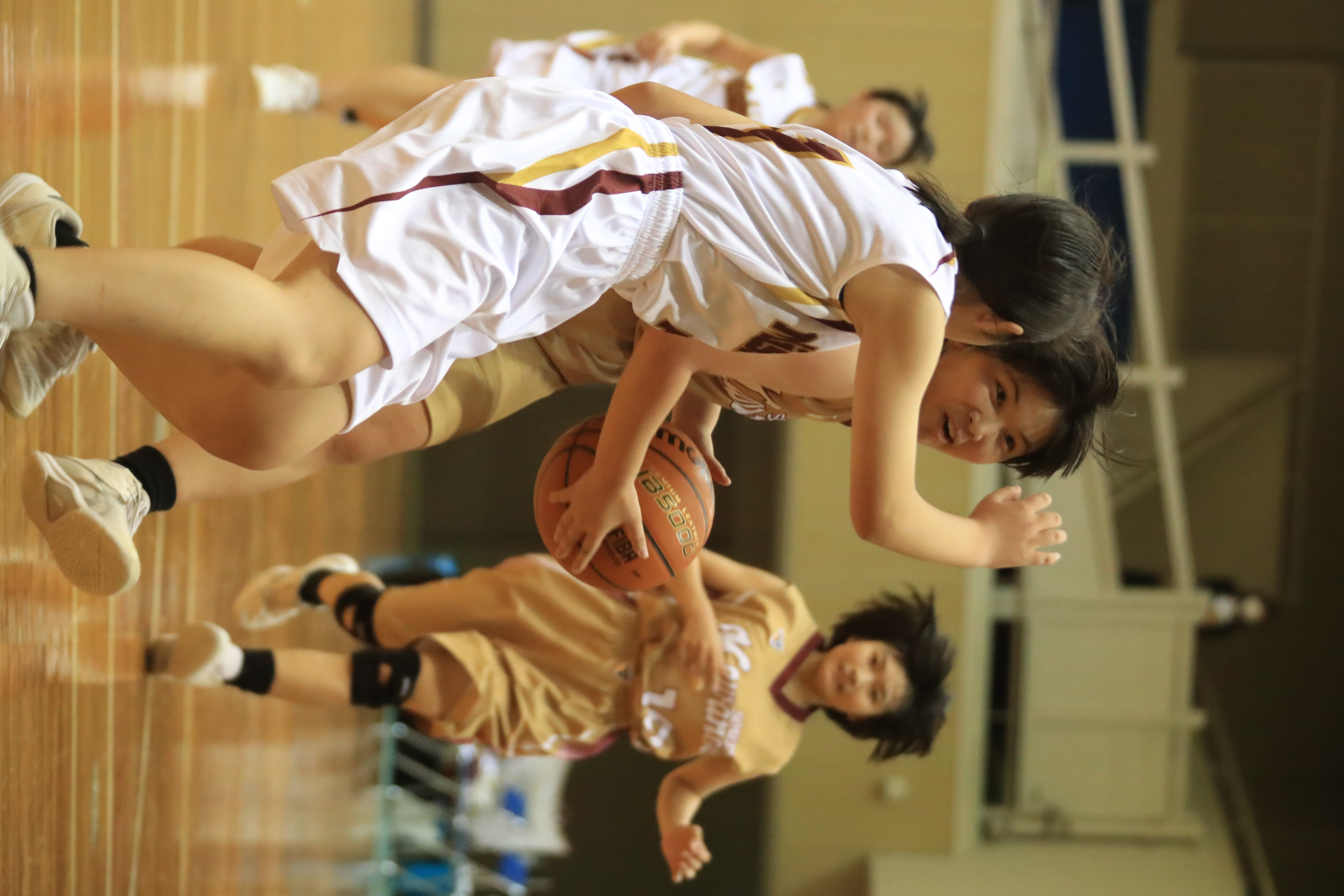 バスケット (413)
