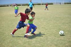 mini_soccer (453)